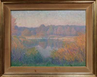 Autor neurčen - Zarostlý rybník