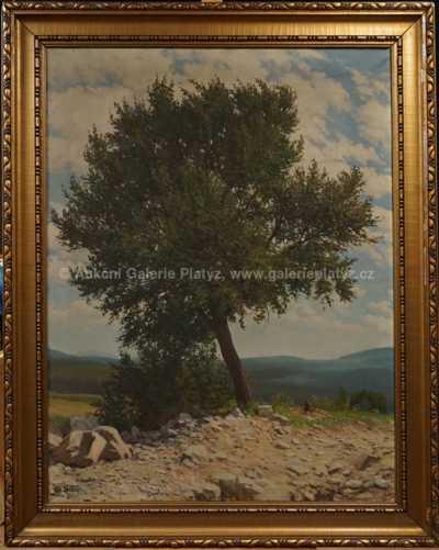 Vít Skála - Osamocený strom