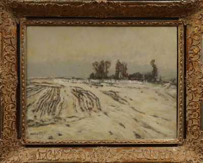 Jaroslav Panuška - Pole v zimě