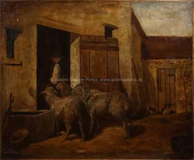 Neznačeno - S ovcemi