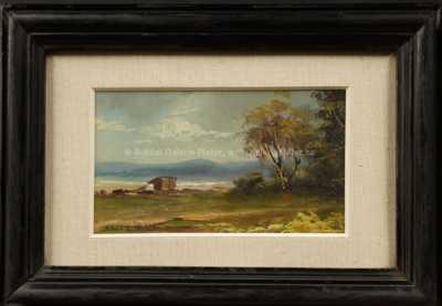 Antonín Waldhauser  - Na kraji lesa