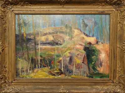 Karel Jan Sigmund - Pod sklálou