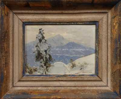 Roman Havelka - Hory pod sněhem