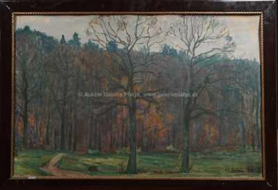 Antonín Hudeček - Podzimní les