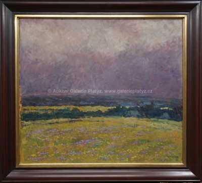 Gustav Macoun - V dešti