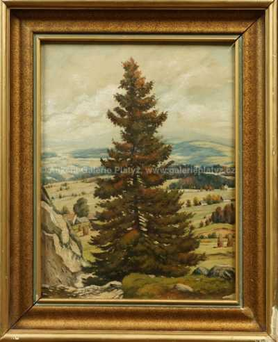 Ludvík Csordák - Osamělý strom