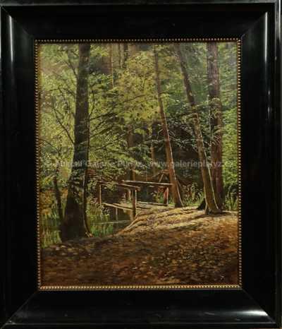 Autor neurčen - Lesní tůň