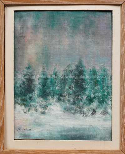 František Jiroudek - Les v zimě