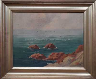 S. G.  Maran - Rackové na pobřeží
