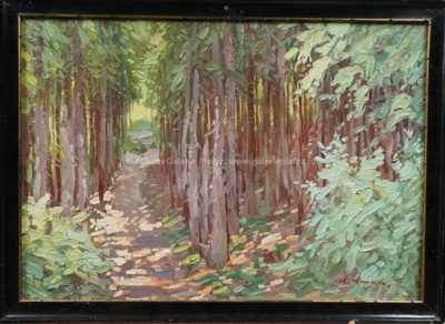 Antonín  Augusta - Lesní pěšina