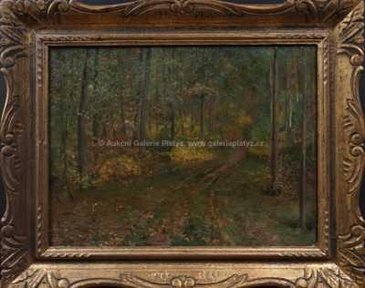 Josef Holub - Cesta v lese