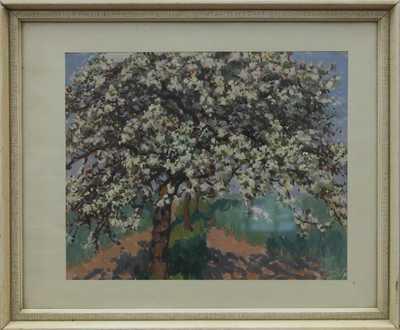 Václav Malý - Rozkvetlý strom