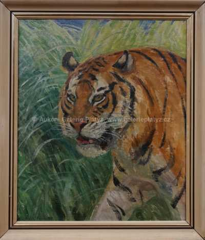 Arnošt Hofbauer - Tygr na lovu