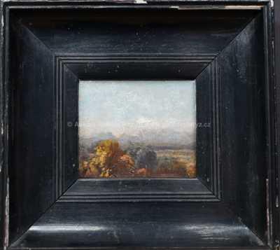 Michael Haubtmann - Pohled na Corregio