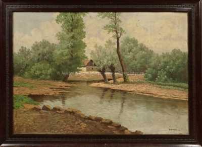 Antonín  Augusta - Vrby u řeky