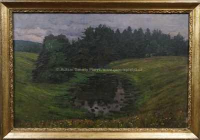Lilli Gödl-Brandhuber - Rybník u lesa