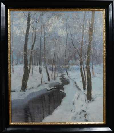 Karel Schadt - Zimní potok