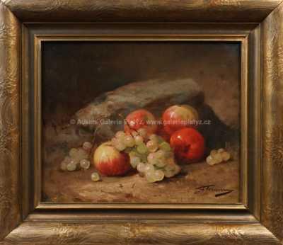 Autor neurčen - Ovocné zátiší