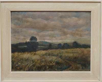 Karel Randa - Louka ve větru