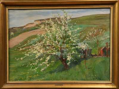 Josef Štolovský - Rozkvetlý strom