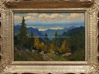 Roman Havelka - Pohled do údolí