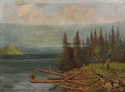 Karel Novák - Lesní jezero