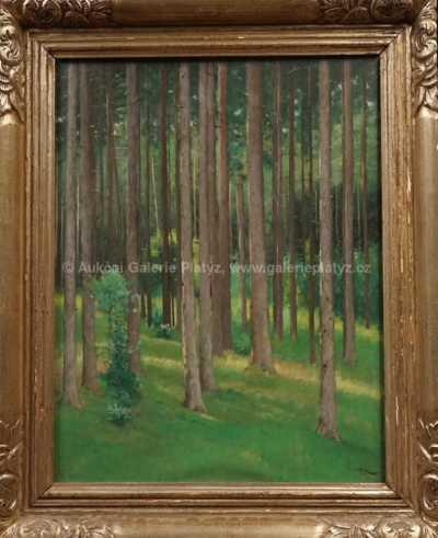 František X. Diblík - Slunce v lese