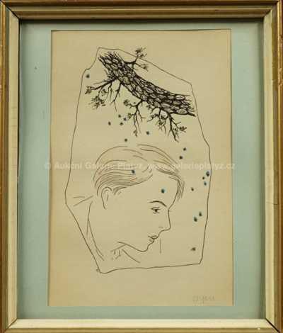 Marie Čermínová - Toyen - Portrét