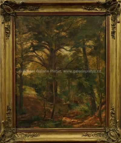 Karel Jan Sigmund - Hluboký les
