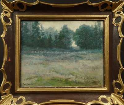 Gustav  Porš - Louka u lesa