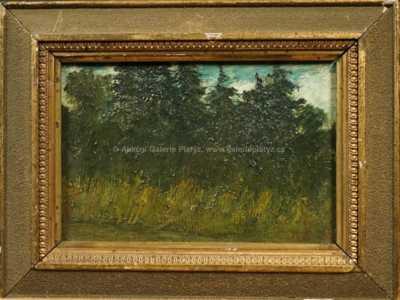 Antonín Waldhauser  - Vysoké trávy