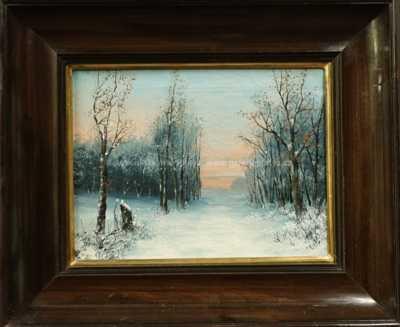 Antonín Waldhauser  - Zimní nálada