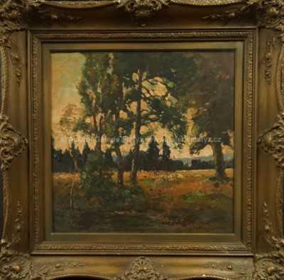 Autor neurčen - Průhled lesem