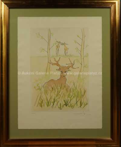 Salvador Dalí - O jelenovi (LE CERF MALADE)