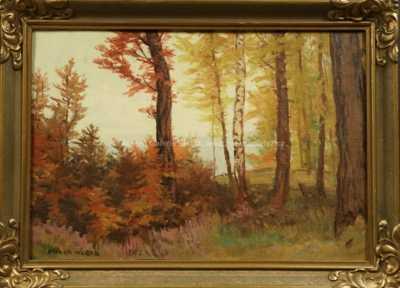 Otakar Hůrka - Barevný les