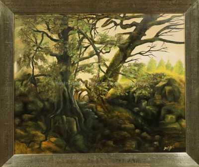 Jan Go Raitr - Tajemný les
