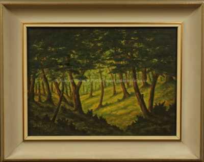 František Drtikol - Slunce v lese