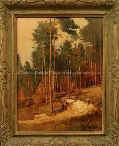 Josef Procházka - Cesta k lesu
