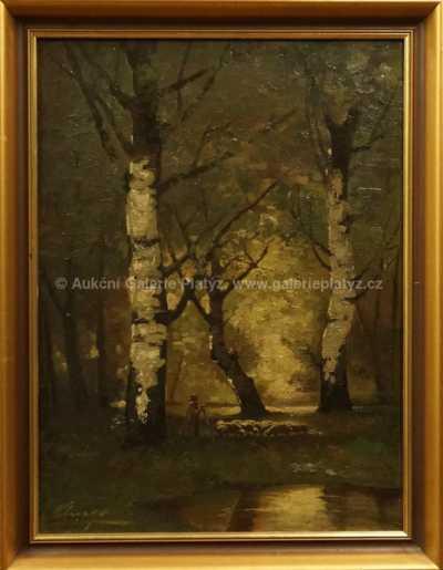 Autor neurčen - V lese