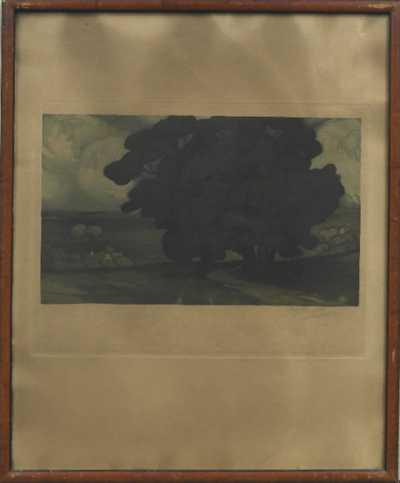 Vojtěch Preissig - Strom u cesty