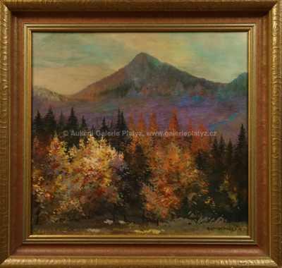 Roman Havelka - Barevný les