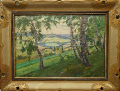 Alois Kalvoda - Pohled do kraje
