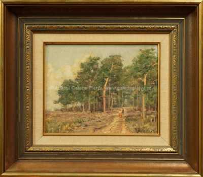 Josef Procházka - Na cestě k lesu