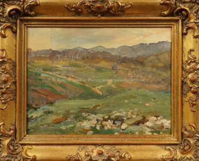 František Kaván - Pohled do údolí
