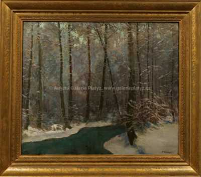 Karel Schadt - Jinovatka v lese