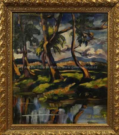 Autor neurčen - Stromy u vody