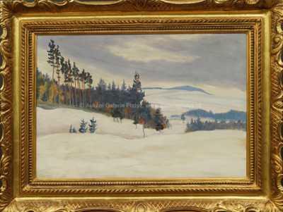 František Kaván - Zimní krajina