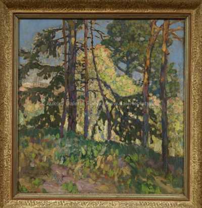 Ota Bubeníček - Průhled lesem