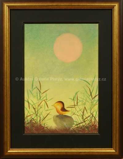 Ota Janeček - Ptáček v travách