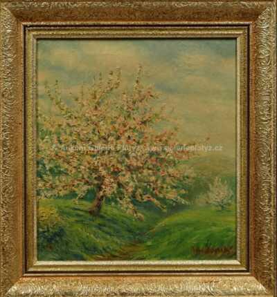 Bohumír Dvorský - Rozkvetlý strom